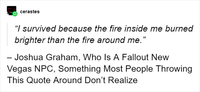 """I Survived Because The Fire Inside Me Burned Brighter Than The Fire Around Me"""
