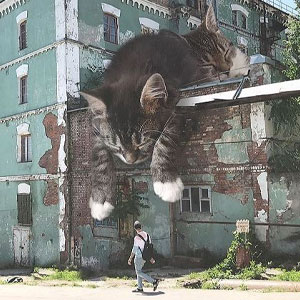 Guy Creates Images That Show How Earth Would Look If Cats Were A Lot Bigger (30 Pics)