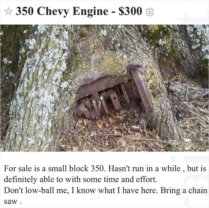 Bring A Chain Saw...