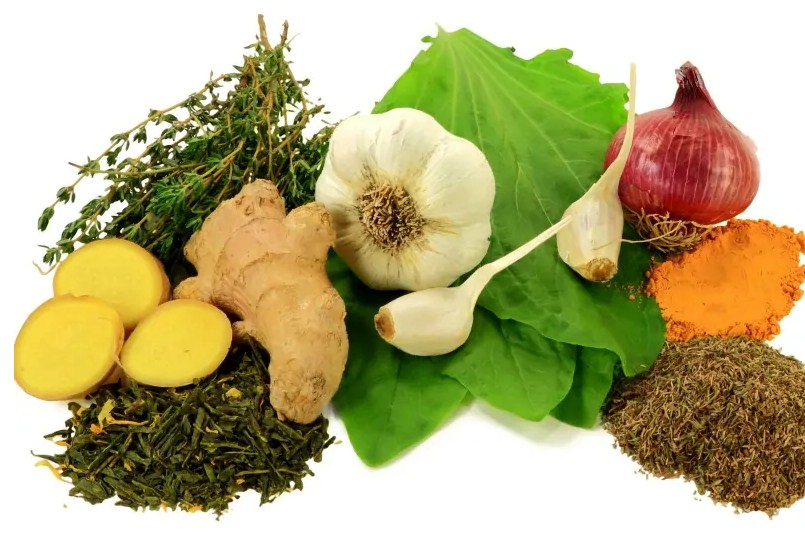 15 Amazing And Powerful Natural Antibiotics And Side Effects