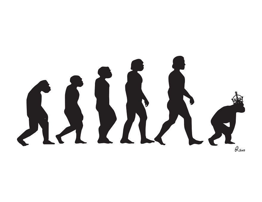 Still Don't Believe In Evolution?! These Cartoons Take It To The Next Step.