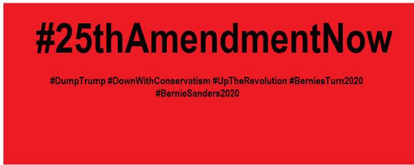 25th-Amendment-5d732cdf2444c-png.jpg