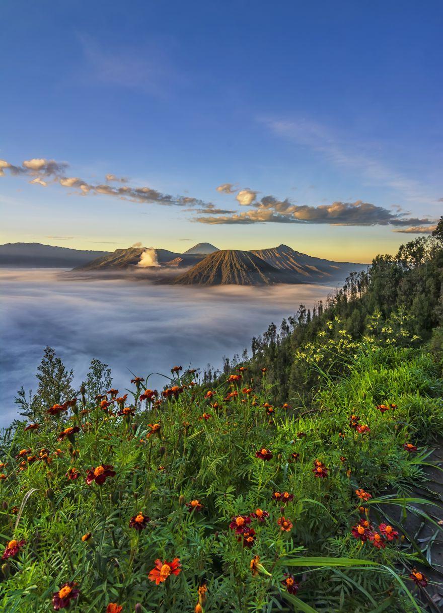 Beautiful Morning In Bromo
