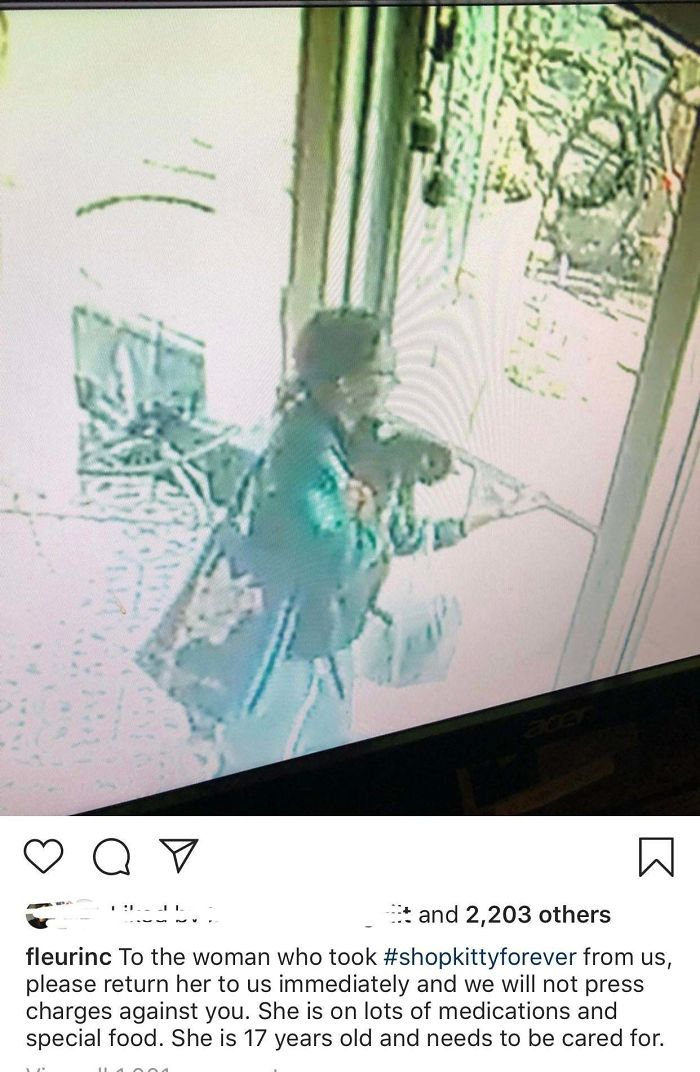 This Woman Who Stole The Shop Cat From A Local Flower Shop
