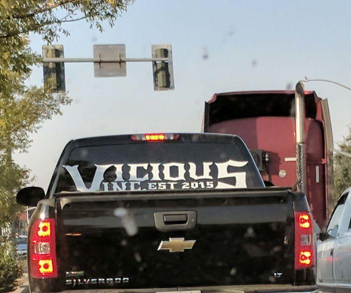 Vicious Inc... What?!