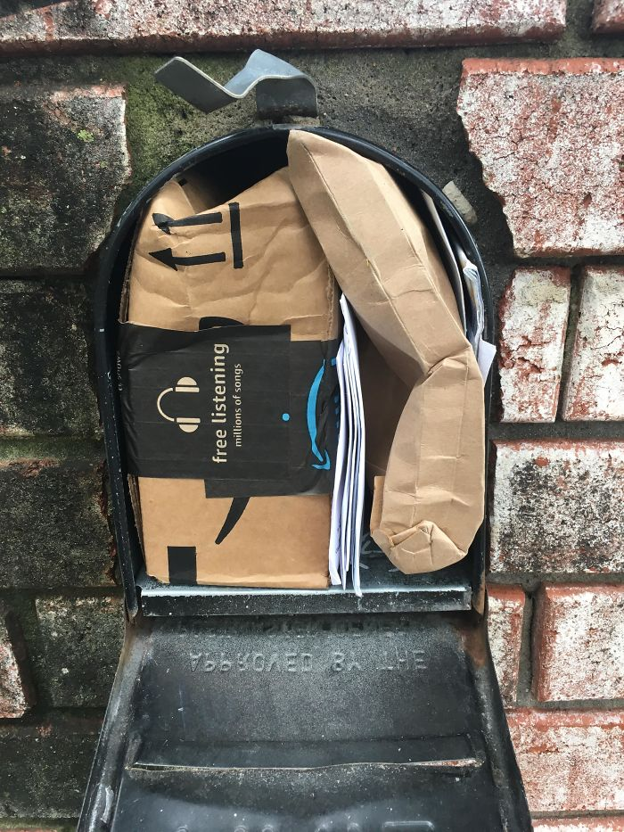 This Is How Our Mail Person Chose To Deliver Our Packages Today