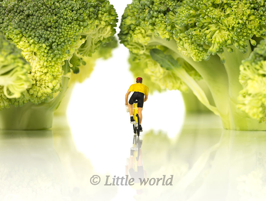 A New Serie Of Little World