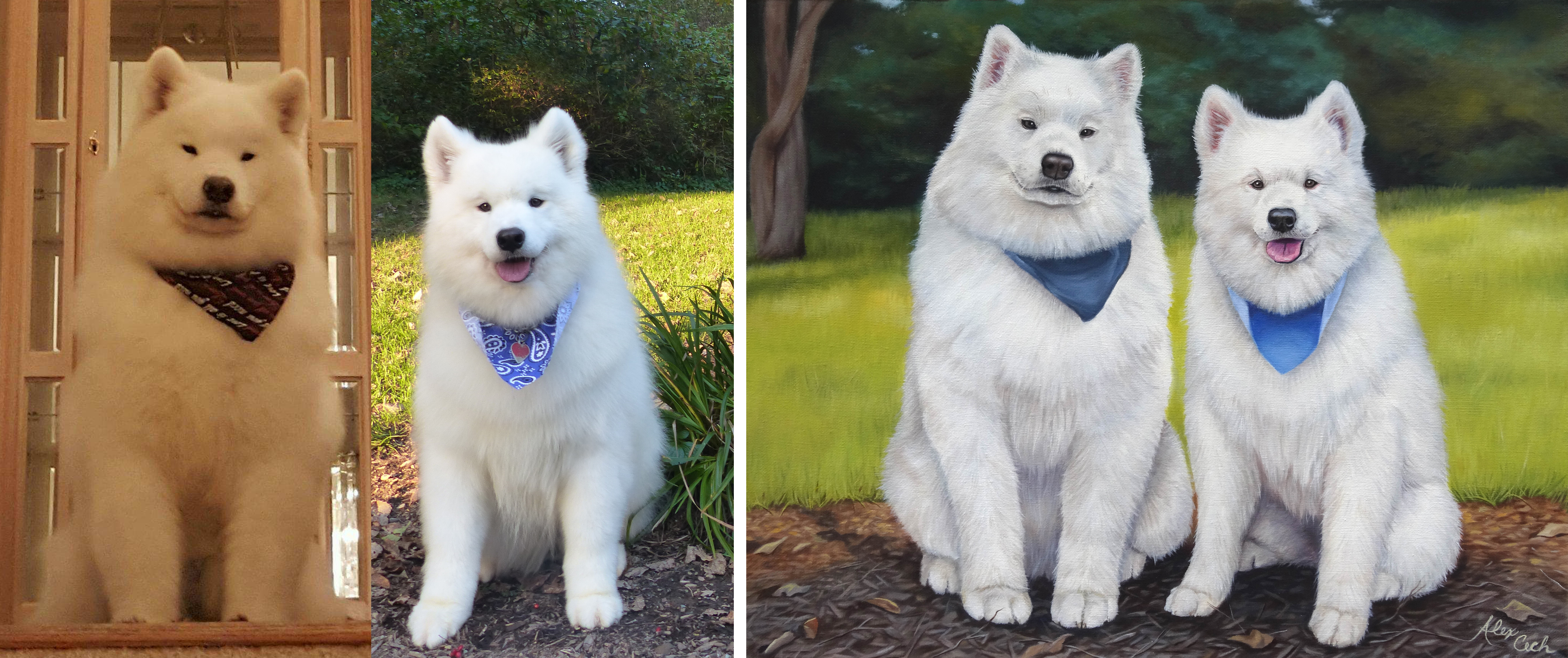 I Paint Pets From Photos, Here Are 12 Of My Favorite Before And Afters (Part 2)
