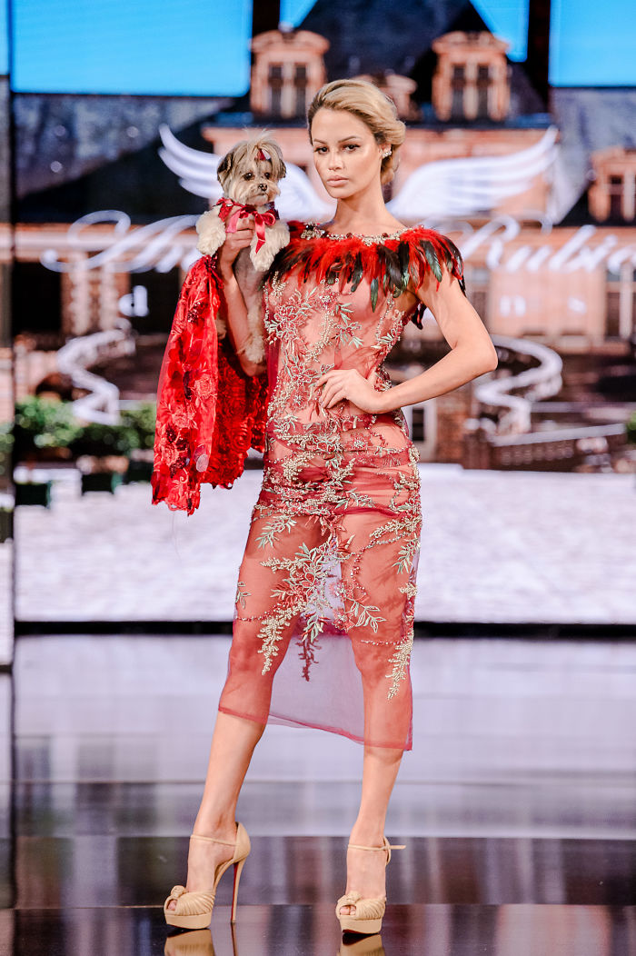 Dogs Take Over The Catwalk At Fashion Week