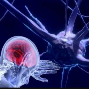 "Neuroscientists Make ""Jaw-Dropping"" Discovery Of ""Wireless"" Brain Communication"