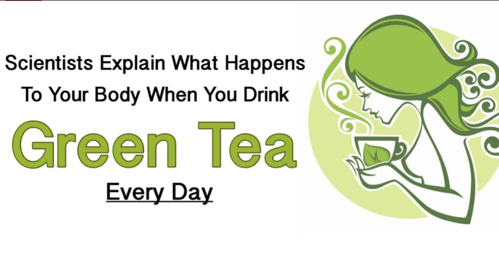 Scientists Explain What Happens to Your Body When You Drink Green Tea Every Day