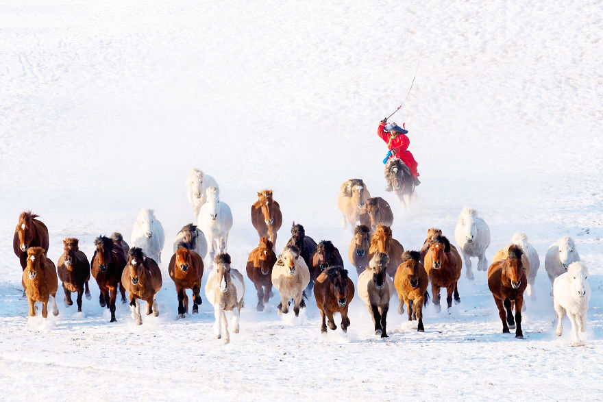 Snow Horseman