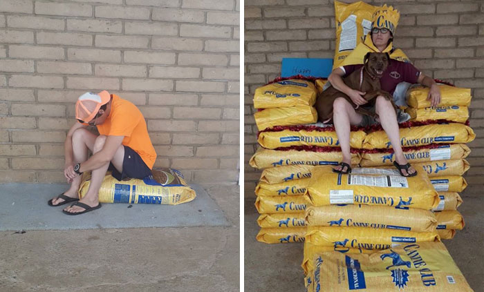 Animal Shelter Employee Asks People To Donate Dog Food For Her Birthday, Builds A Giant Throne Out Of It