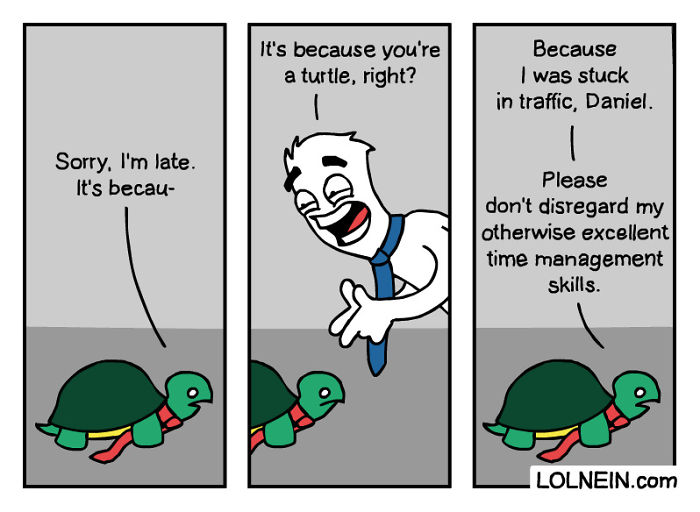 Happy World Turtle Day