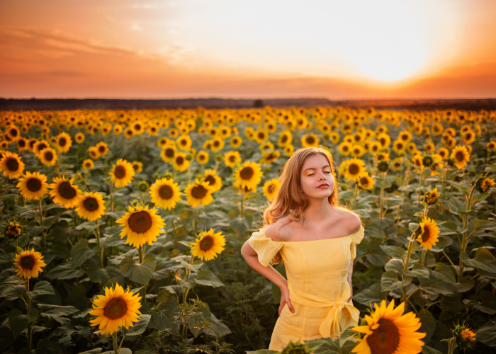 I Create This Dreamy Portraits Inspired By Van Gogh's Sunflowers