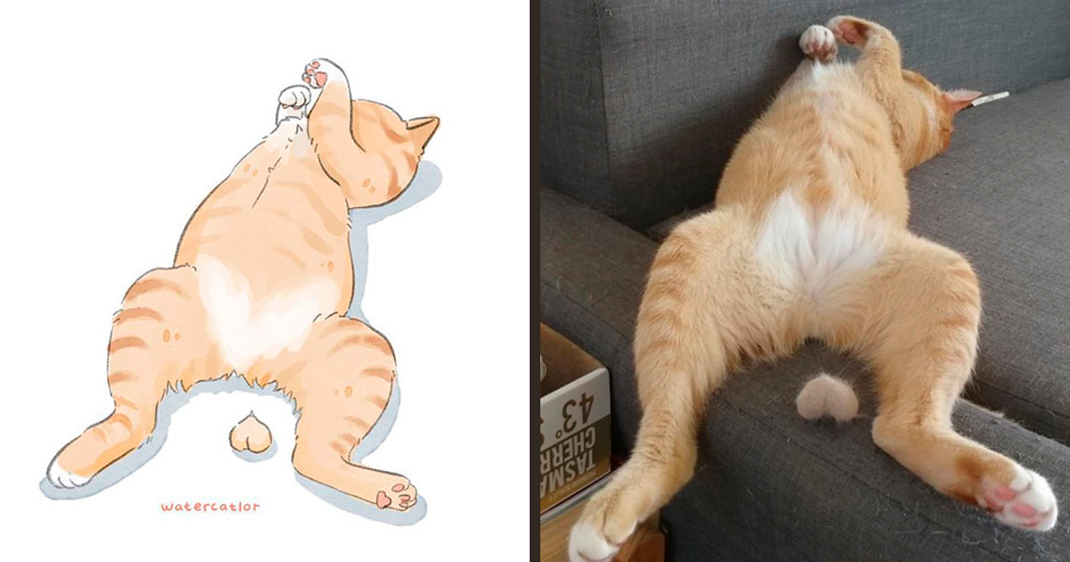 30 Of The Funniest Internet-Famous Cat Pics Get 'Watercolorized' By Amelia Rizky