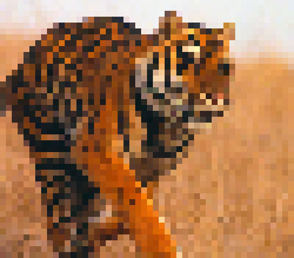 These 22 Pics Are Composed Of As Many Pixels As There Are