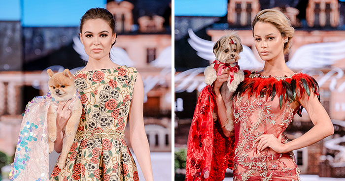 My Spring/Summer 2020 Collection For The New York Fashion Week Where Dogs Take Over The Catwalk (21 Pics)