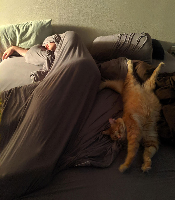 Everybody's Got These Great Pictures Of Their People Sleeping With Their Pets And I'm Over Here Stuck With This Mess