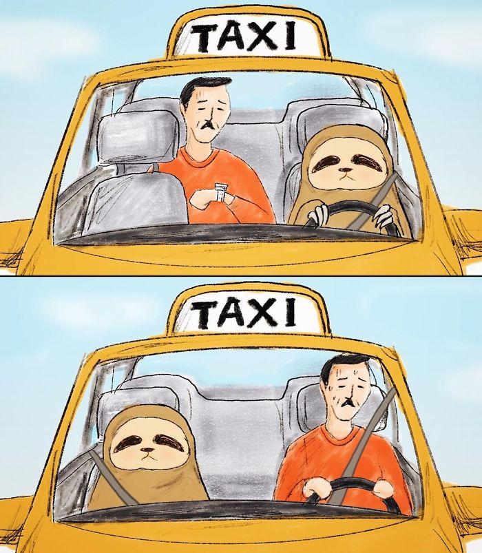 Ленивец и его проблемы
