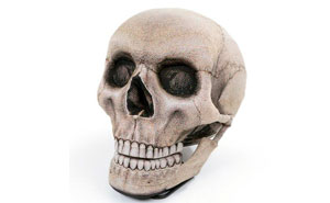 This Skull Chair With A Movable Jaw Is The Perfect Throne For Halloween