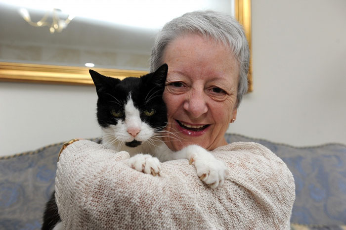 Tom, A 24-Year-Old Cat Who Discovered His Owner's Cancer
