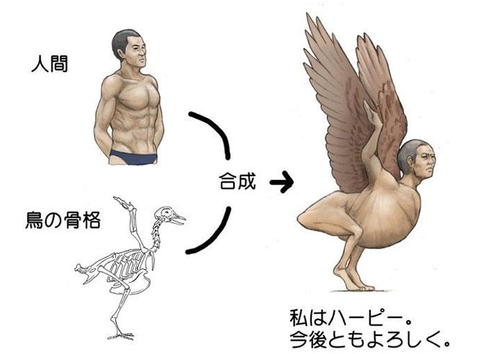 satoshi-Kawasaki-harpie