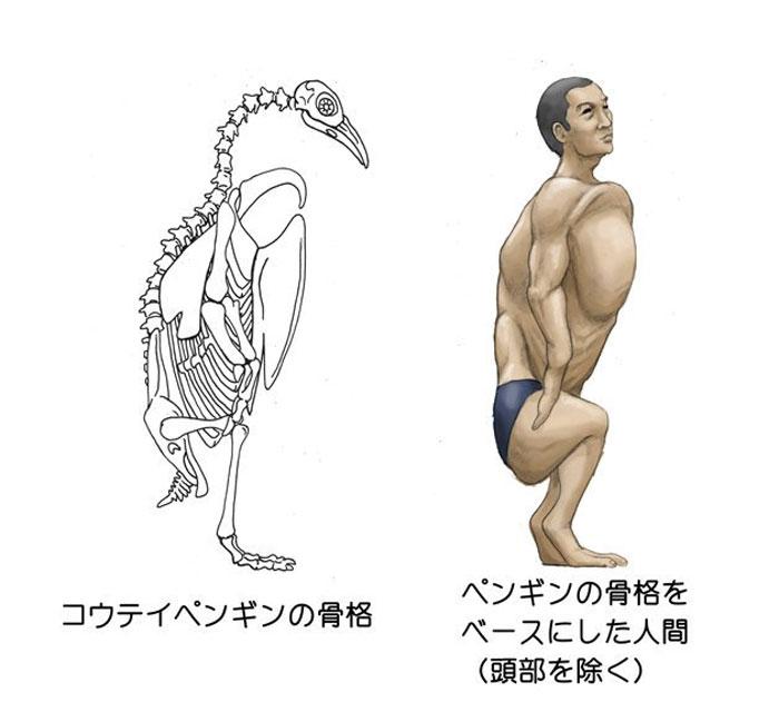 Humans-Animals-Anatomy-Satoshi-Kawasaki