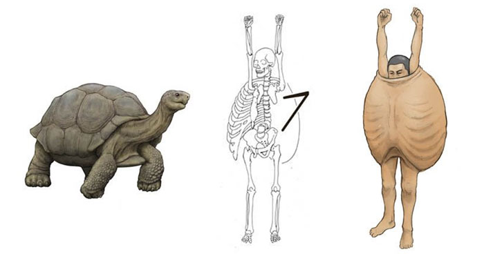 Japanese Illustrator Shows How Humans Would Look If We Had Various Animals' Bone Structures (14 Pics)