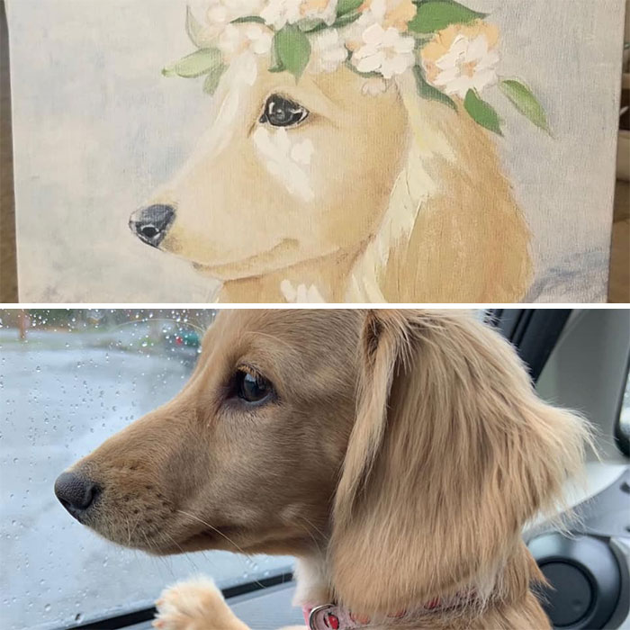 The Top Is A Random Painting I Bought, The Bottom Is My Dog, Applesauce. I Had To Buy The Painting, The Resemblance Is Uncanny!