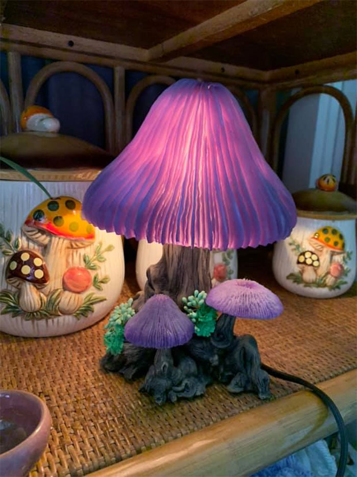 Finally Found A Mushroom Lamp Today! I Am In Love