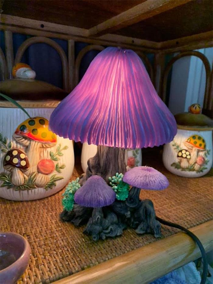 ¡Finalmente Encontré Una Lámpara De Setas Hoy! Estoy Enamorado