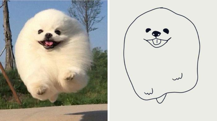 Funny-Poorly-Drawn-Animals-Poorlydraws