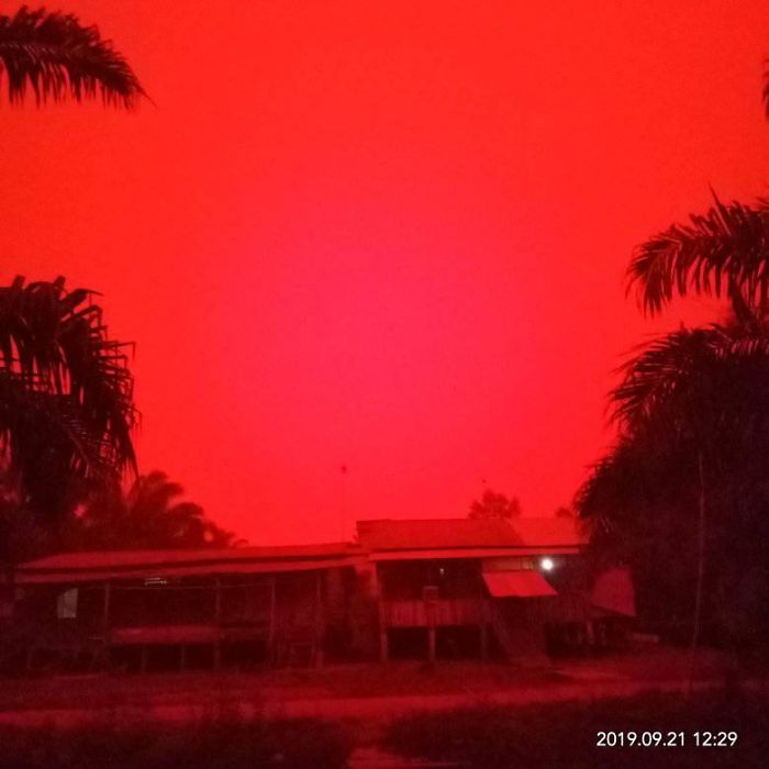 Indonesian Forests Are Burning And People Are Alarmed By Red-Blood Sky