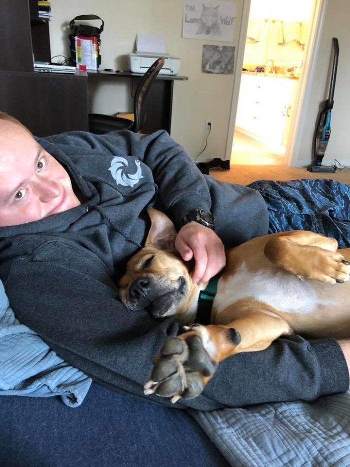 Rescue-Dogs-Stories-Megan-Burris