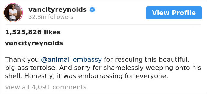Ryan Reynolds Proves He's Incapable Of Not Being Cheeky As He Posts Animal Pics And Still Manages To Troll John Krasinski