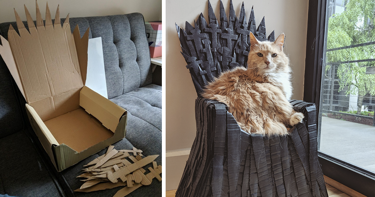 Woman Makes A Game Of Thrones-Inspired Bed For Her Cat And It's Simply Purrfect