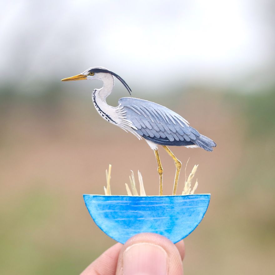 We've Been Creating Miniature Paper Birds And Animals Every Day Since 1st January 2018