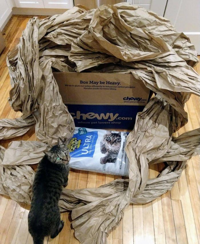 50 Feet Of Paper For 1 Bag Of Kitty Litter