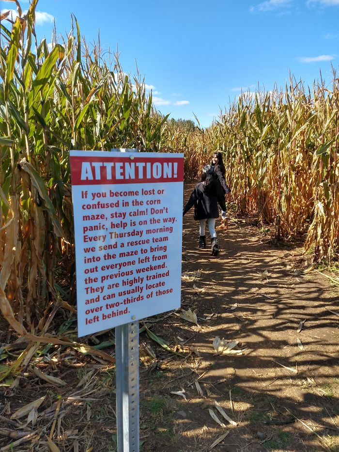 This Corn Maze Sign