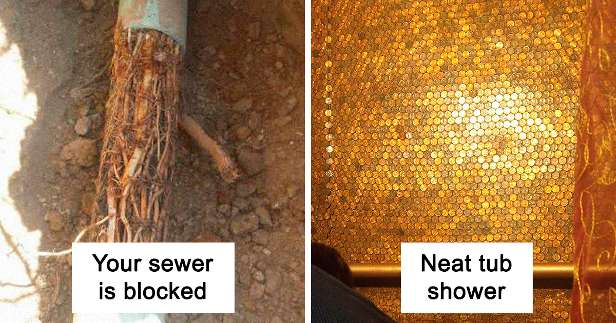 This Guy Has Been A Plumber For 2 Years, And Here Are The Crazy Things He's Seen On The Job (30 Pics)