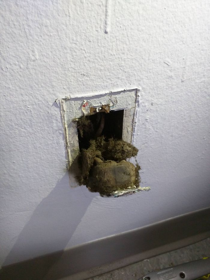 Landlord Ignored Me For Two Months About My Sparking Outlet, Got Worried About A Fire And Did It Myself And I Find This