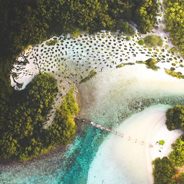 Artist Mixes Animals With Places Of Nature In An Impressive Way