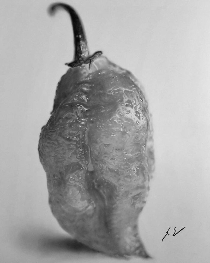 How To Preserve A Ghost Pepper, 2018