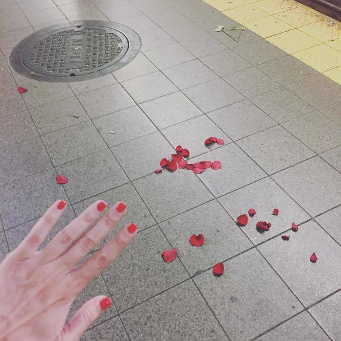 """When Ur #notengaged Waiting For The Train And U Look Down And There Are The Remnants Of A 🧐 Proposal Gone Wrong? Breakup Gone Right? Deadly Florist Battle? Idk What Happened Here But Im Gonna Go Home And Buy My Own Flowers, And I'll Be Like """"Will U Take Urself And Be The Coolest Person In Whatever U Do For The Rest Of Ur Life?"""" And U'll Be Like """"Self, U Had Me At 'After Picking Up Shampoo Im Gonna Get Avocados For Guacamole, They Are On Sale.'"""" Until That Guy Texts Me Back Tho We'll See #committoyourself #blessed"""