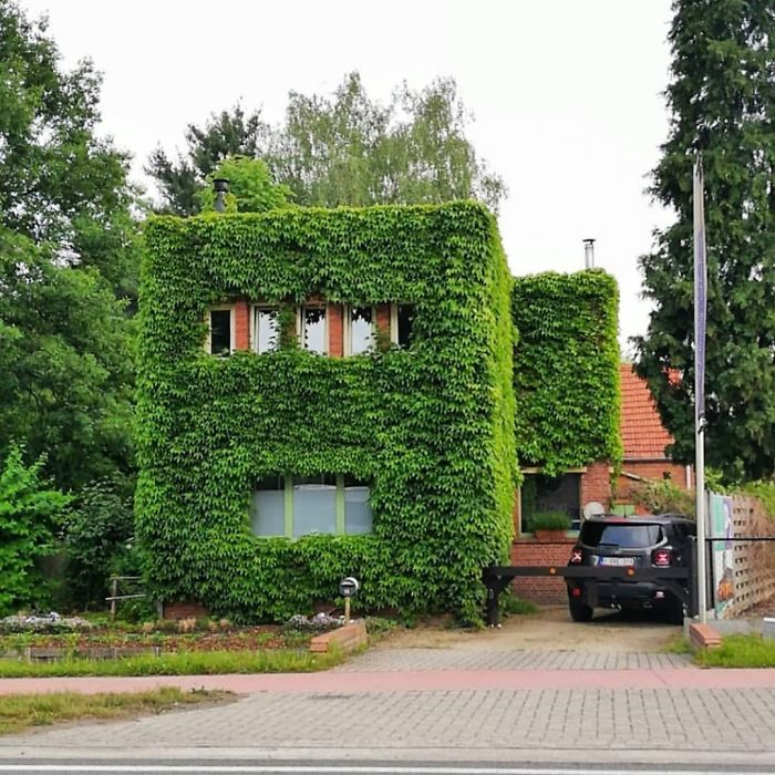 Hiding An Ugly Belgian House Are We?