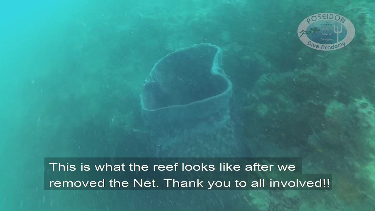 Abandoned Fishing Net Removal While Scuba Diving Is Hard Work!