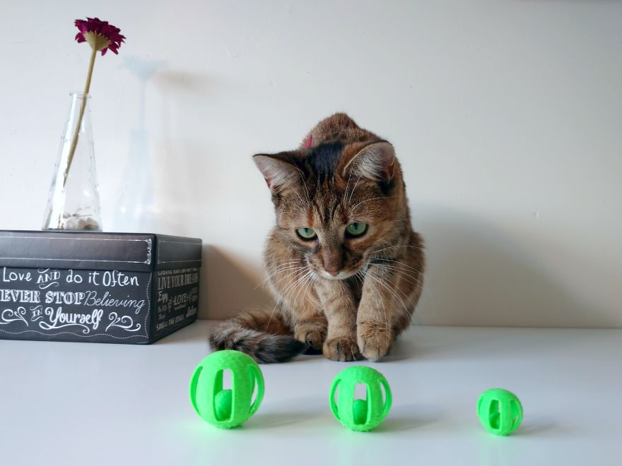 Push And Chase! There's Another, Smaller Ball Printed Inside That Is Off-Centre, Meaning The Ball Will Never Roll Straight