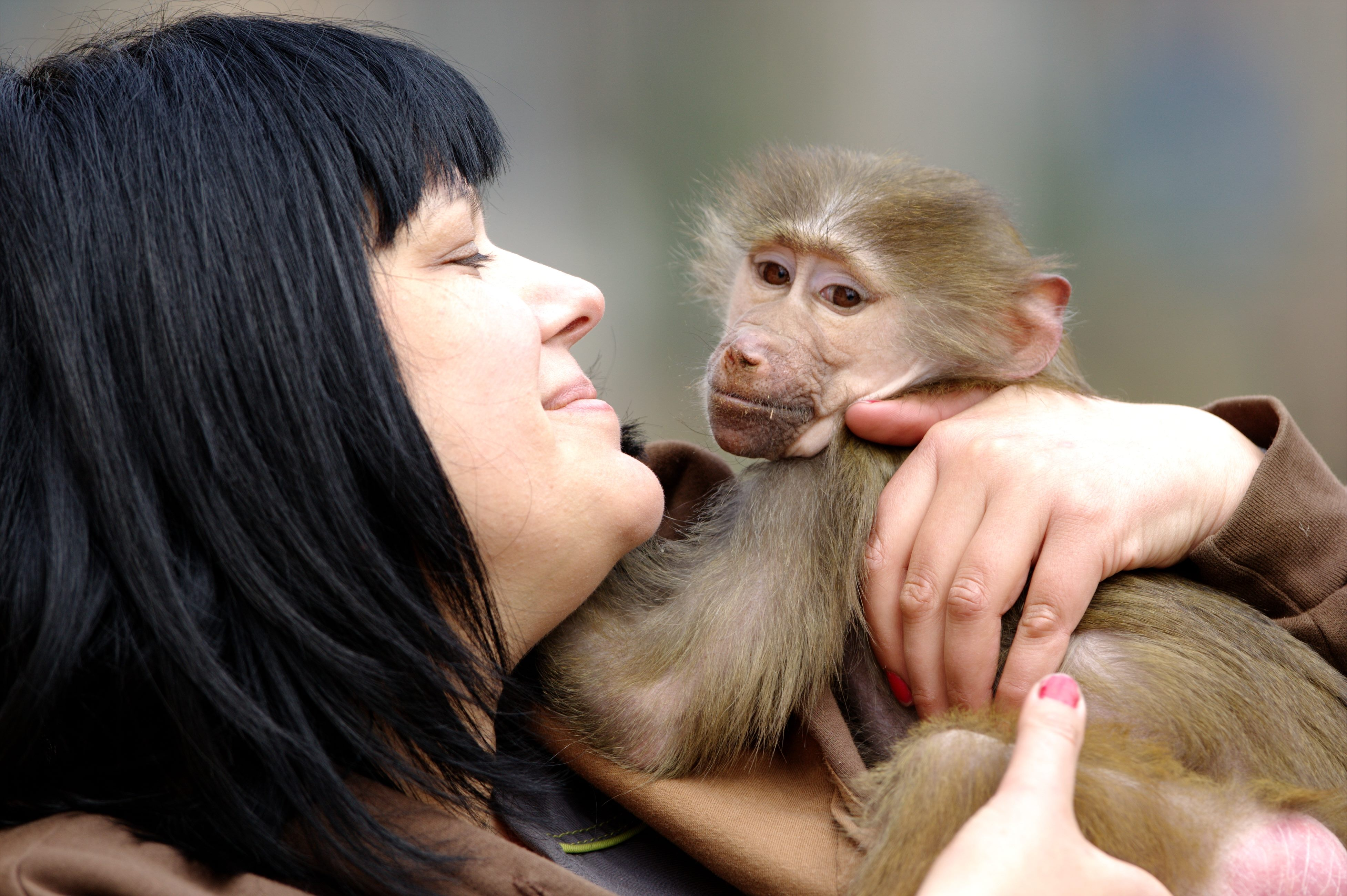 People Show How Animals Should Be Loved