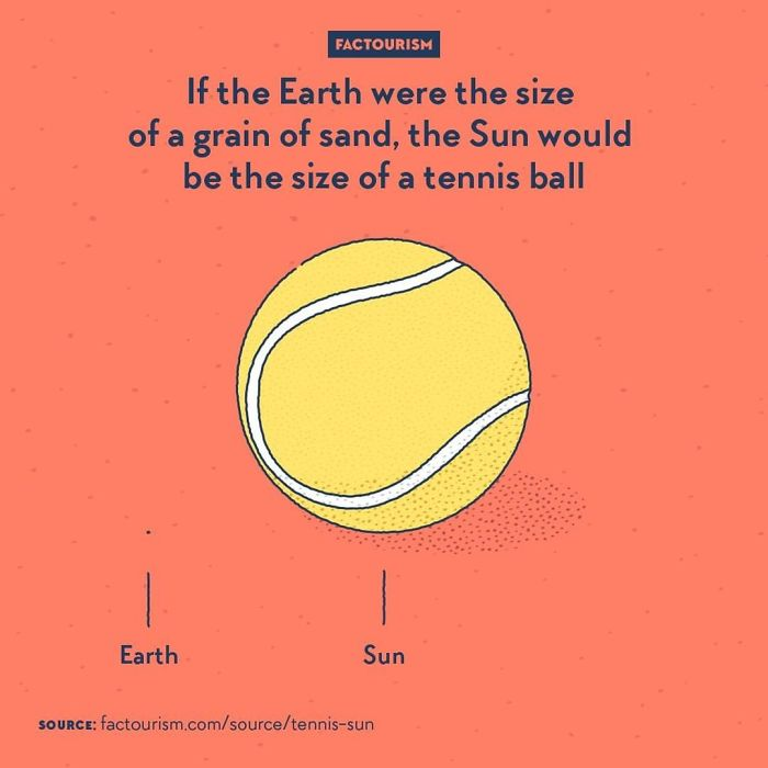 We Love Strange Facts And Decided To Draw Our Favourites. Here Are 30 Of Them.